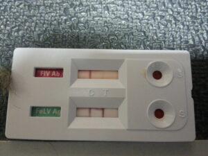 Seroloski test